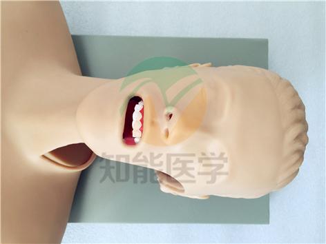 知能医学模型高级气管插管训练模型(带咽喉解剖)