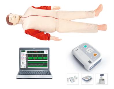高级心肺复苏(AED除颤)模拟人