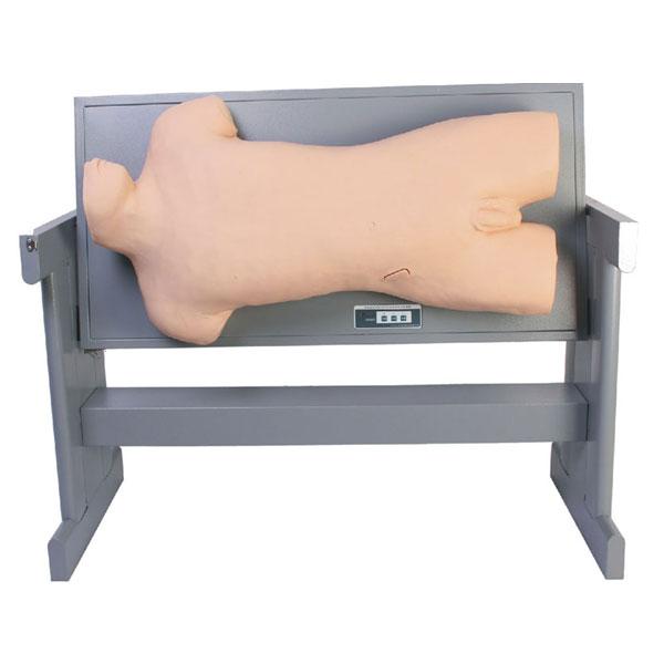 综合穿刺术与叩诊检查技能训练模型系列产品