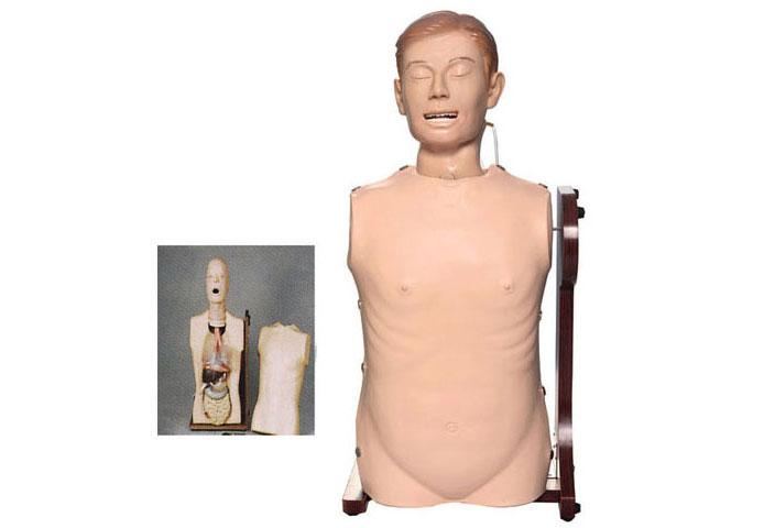 知能医学模型-高级鼻胃管与气管护理模型