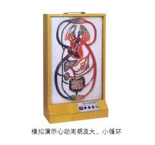 知能医学模型大、小循环电动模型 BIX-A2117