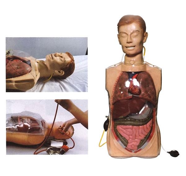 多功能透明洗胃模型 BIX/H80