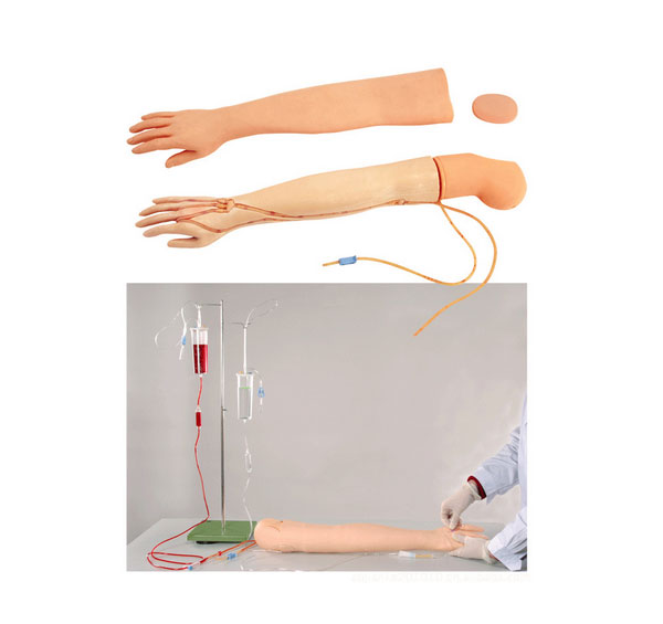 全功能静脉穿刺输液手臂模型 BIX/HS3