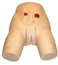 高级女性导尿模型 BIX/H70-3